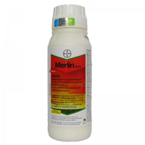 Merlin Duo 500ml