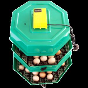 Incubator 5x2 DT cu extensie 82/174 oua-INCUBATOARE OUA