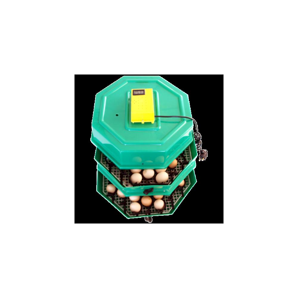 Incubator electric 5x2 DTH-INCUBATOARE OUA
