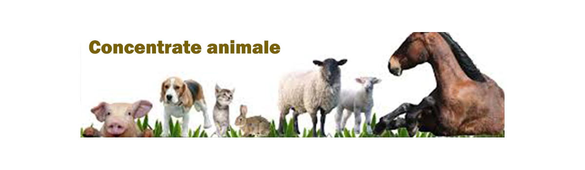 Concentrate animale / Concentrate furajere / Premixuri si concentrate animale